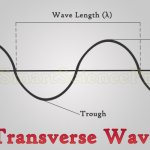 2 Types of Waves by Particle Movement
