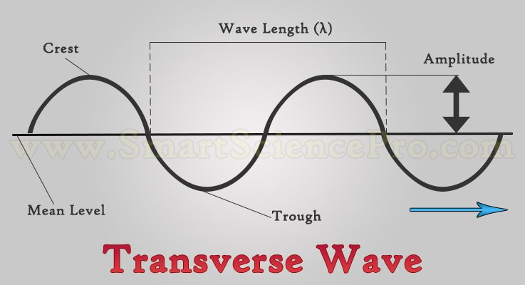 2 Types Of Waves By Particle Movement Smart Science Pro